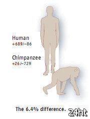 ДНК человека и шимпанзе совпадают меньше чем на 90%?