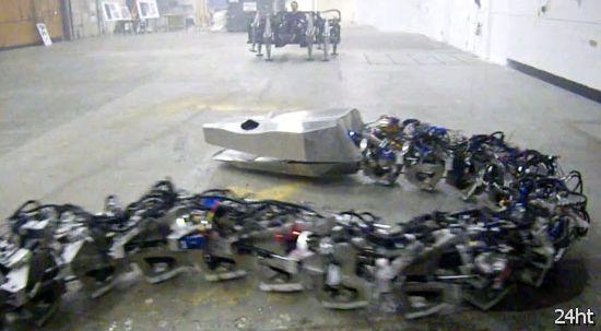 Робот-змея и механический паук  (видео)