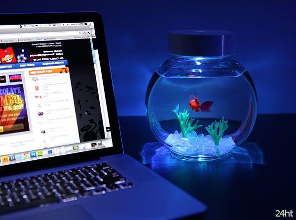 Электрическая золотая рыбка (видео)