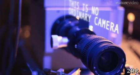Создана лазерная камера для съемки скрытых объектов
