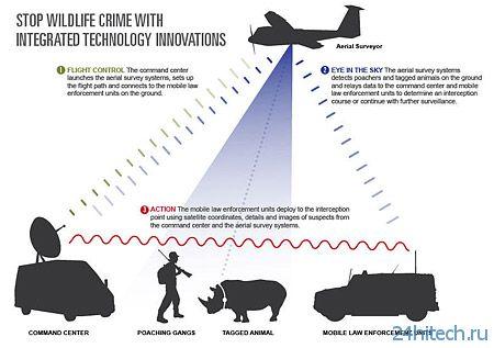 Беспилотники для мониторинга животных