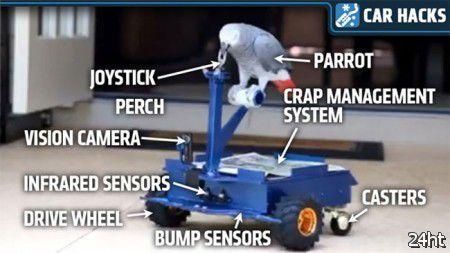 Средство передвижения для попугая