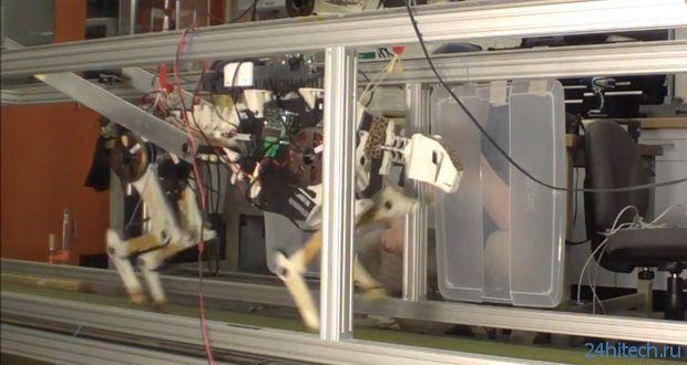 Робот-гепард из MIT (3 фото + видео)