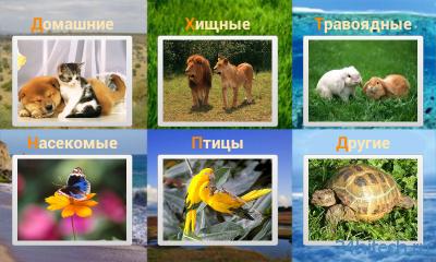 Звуки животных 1.0. Изучение названий и звуков животных