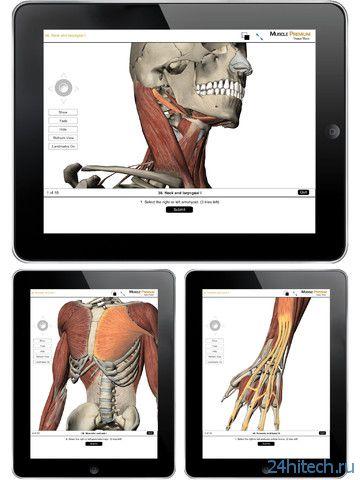 Muscle Premium 3.2.9 Человеческое тело в деталях