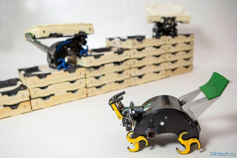 Роботы-термиты продемонстрируют новый подход к строительству