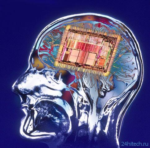 Начинается разработка нейропротезов для восстановления памяти