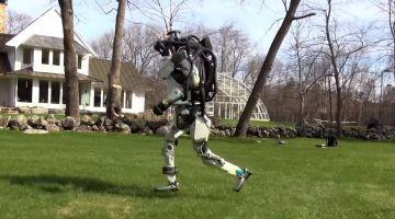 видео дня | Роботы Atlas и SpotMini на прогулке