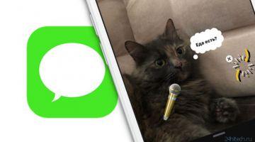 Как переслать сообщение SMS или iMessage другому контакту на iPhone