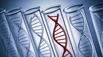 Мусорная ДНК оказалась эффективна в борьбе с раком