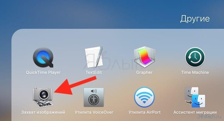 Сохранение гифки на iPhone