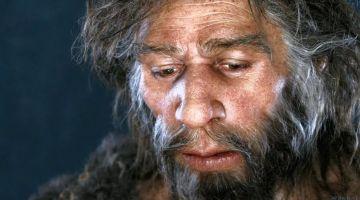 Почему наши предки чувствовали боль сильнее, чем мы?