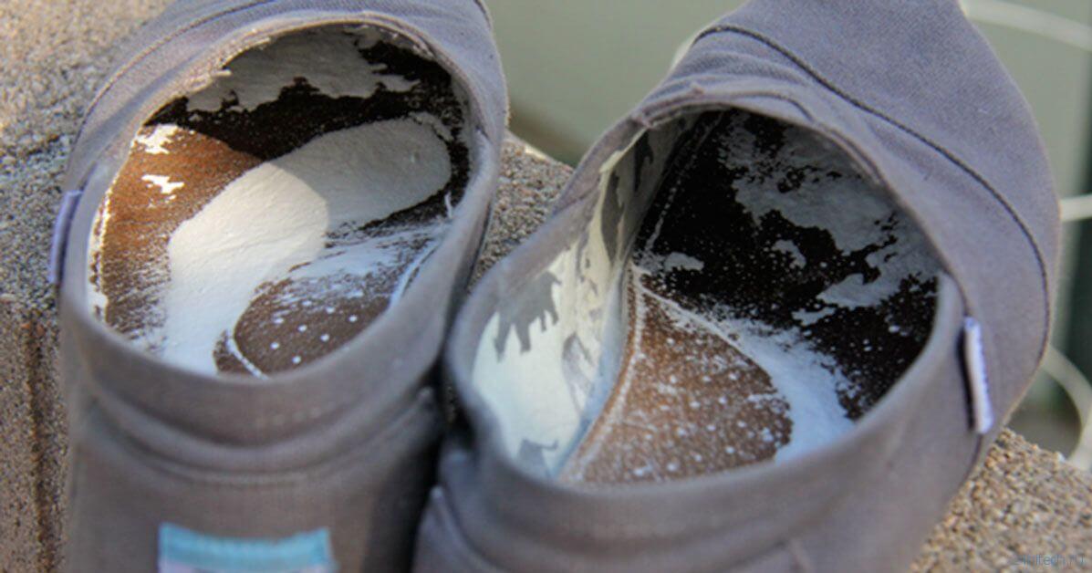 Почему ноги пахнут сыром? Бактерии дают вашей обуви 4 разных запаха
