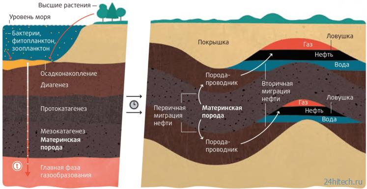 Нефть способна возобновляться: миф или факт?